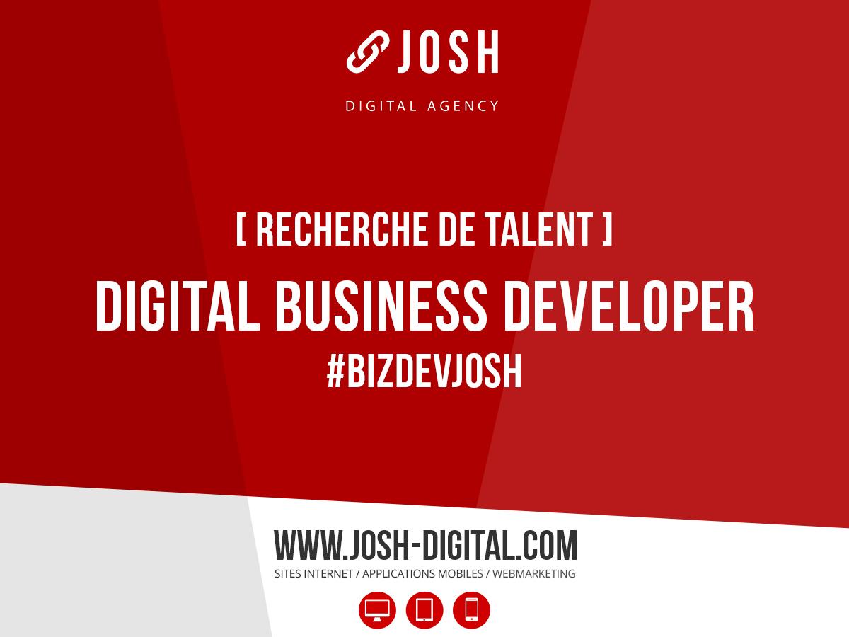 Recrutement : Digital Business Developer (H/F)